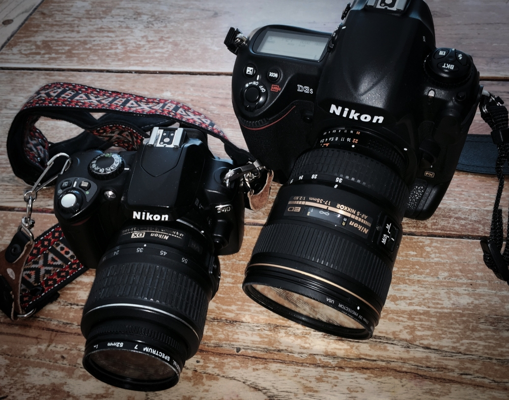 D40and D3s